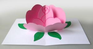 biglietto-pop-up-rosa