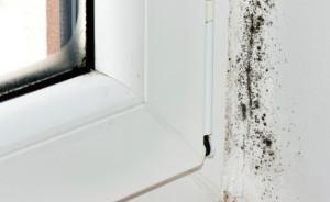 umidita-casa